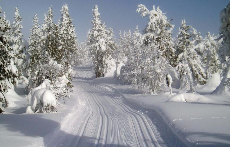 Skiing in Trysil - holiday accommodation in Norway