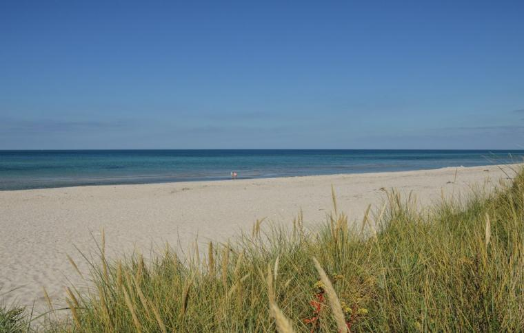 Holiday homes in Rörvig - holiday accommodation in Denmark