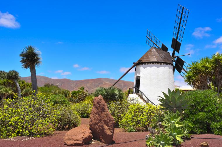 villas to rent in the Canary Islands