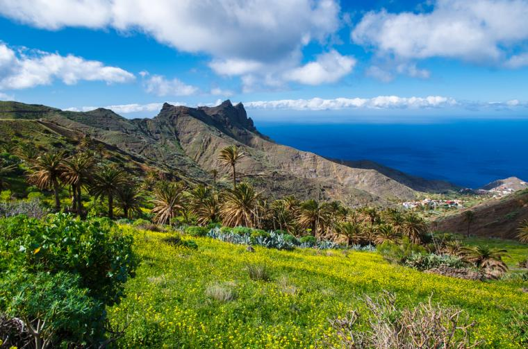 Holiday villas in the Canary Islands