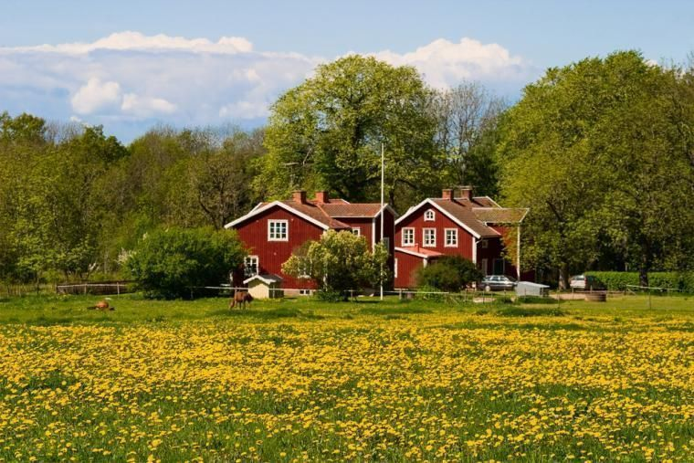 self-catering Sweden holiday cottages
